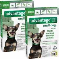 12 MONTH Advantage II Flea Control GREEN for Dogs under 10 lbs