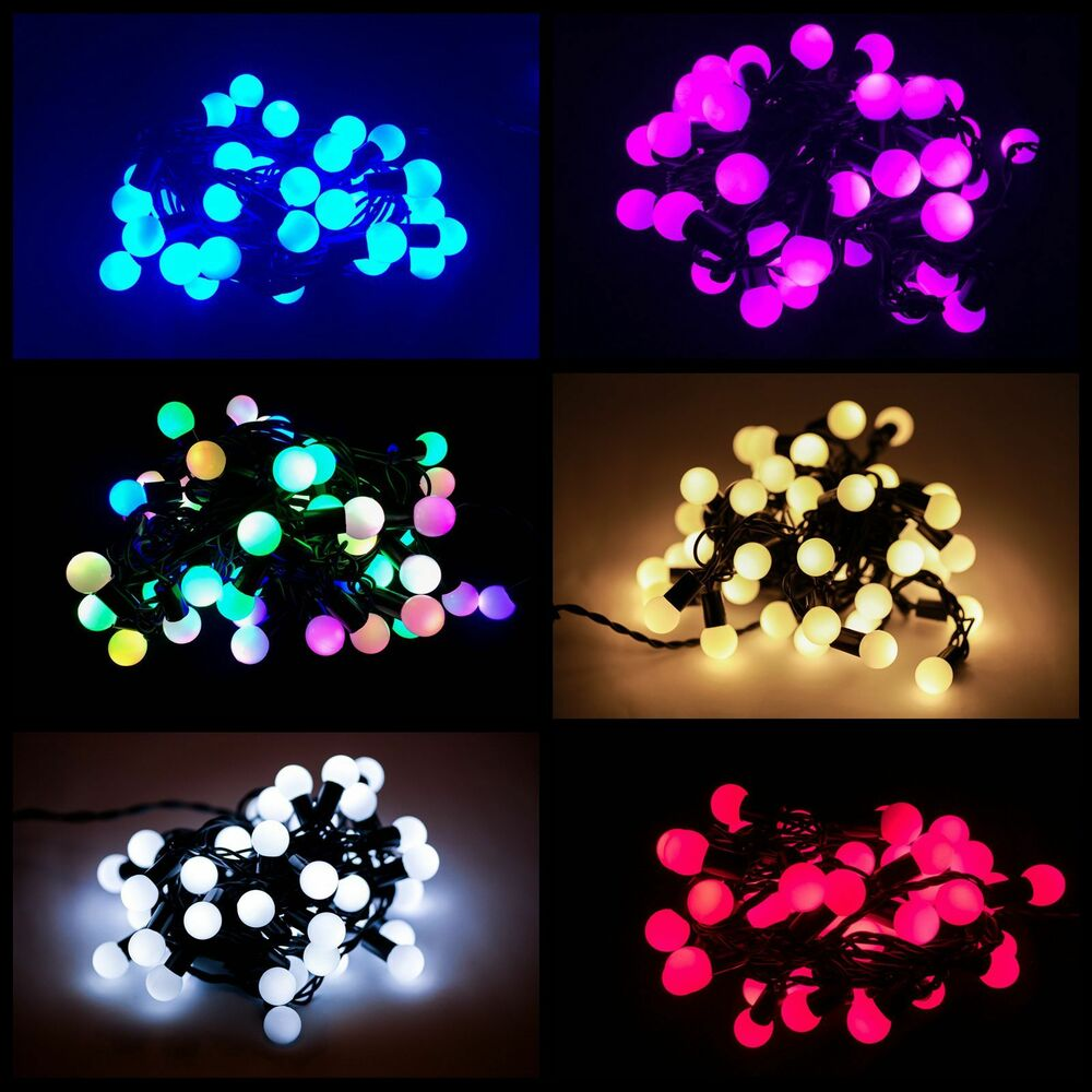 50/100 LED Berry Christmas Wedding Garden Party String