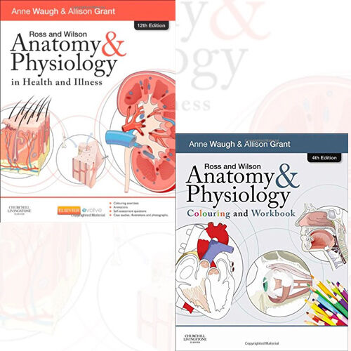 Ross and Wilson Collection 2 Books(Anatomy and Physiology Colouring ...