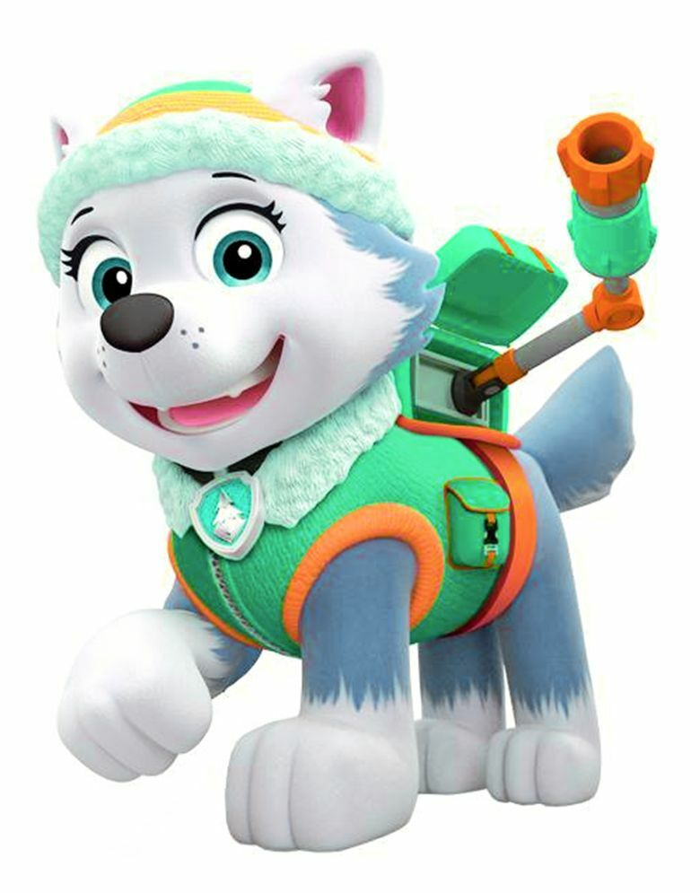 Paw Patrol Everest Iron On Transfer 5 Quot X 6 5 Quot For Light