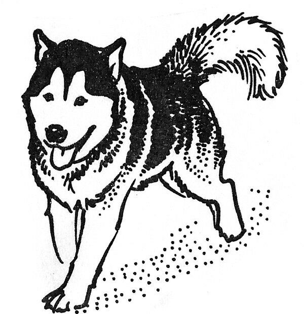Unmounted Rubber Stamps 4 Pc Sled Dog Set Sled Dogs Malamute