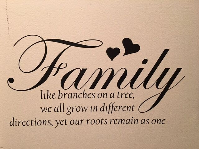 Family Like Branches On A Tree Vinyl Wall Art Decal