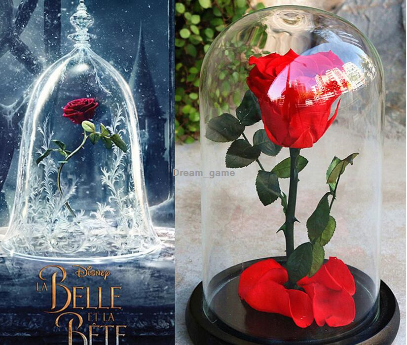 The Beauty And The Beast Rose Preserved Flower Eternal