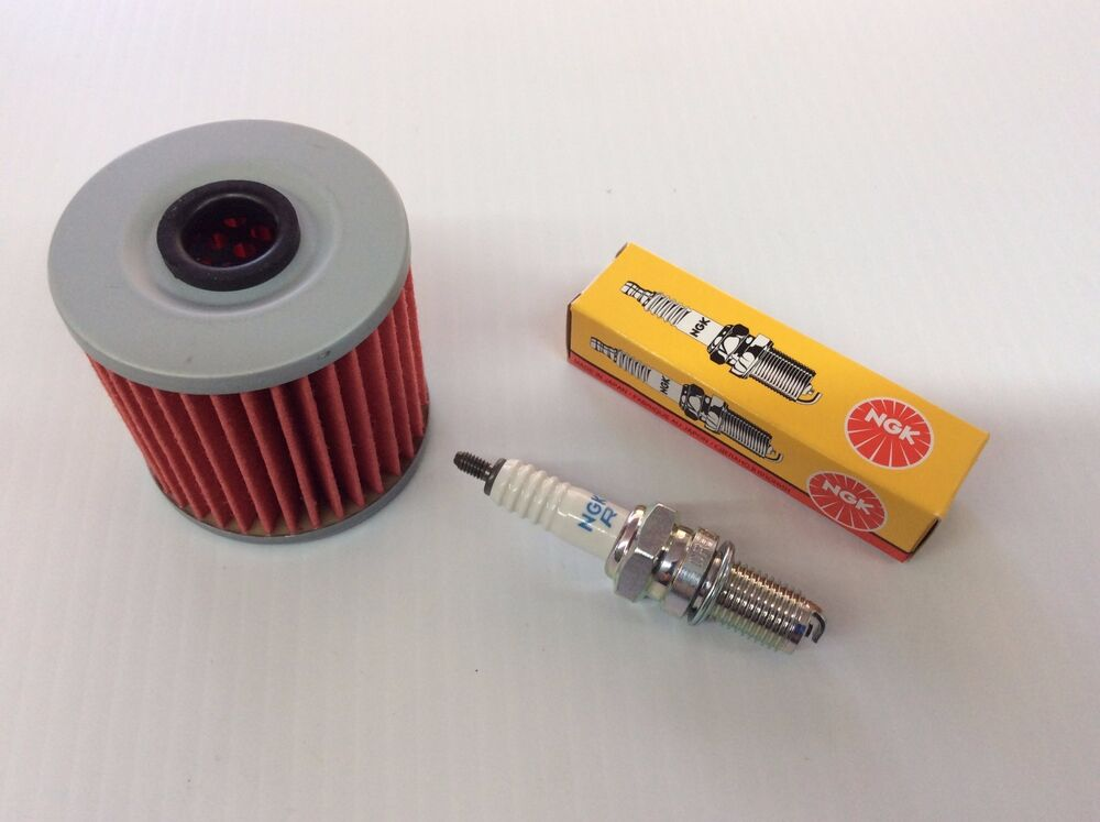 What Oil And Filter For A  Kawasaki Praire