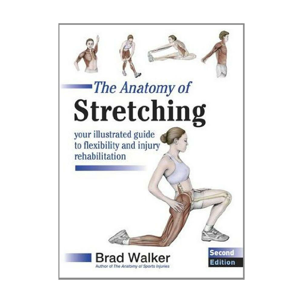 Brad Walker The Anatomy of Stretching New Paperback 9781905367290 | eBay