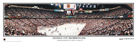e7e66008d Details about New Jersey Devils 2000 Stanley Cup Champions Unframed Panoramic  Poster 4008
