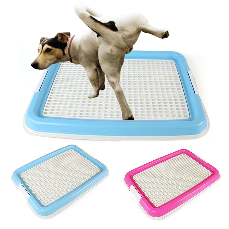 My Dog Peed On My New Rug: New Pet Toilet Indoor Puppy Pee Training Potty Grid Dog
