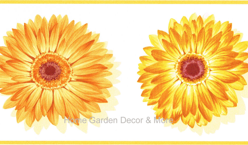 Yellow Orange Gerbera Daisy Flower Floral on White Background Wall ...