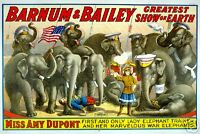 Repro Circus Print for 'Barnum & Bailey' - Elephants