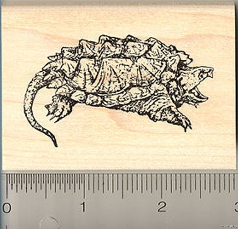 Alligator Snapping Turtle Rubber Stamp New Wm H6907 Ebay