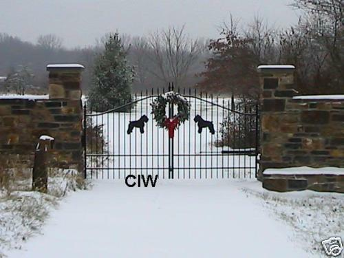 Single swing wrought iron driveway gate ft wide fence