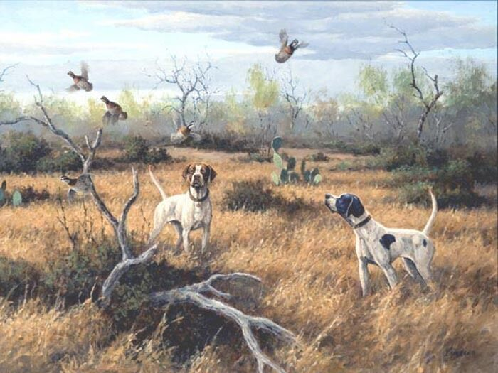 List Of Best Bird Hunting Dogs
