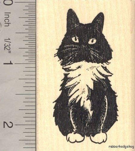 Domestic Longhaired Cat Rubber Stamp H14020 Wm Ebay