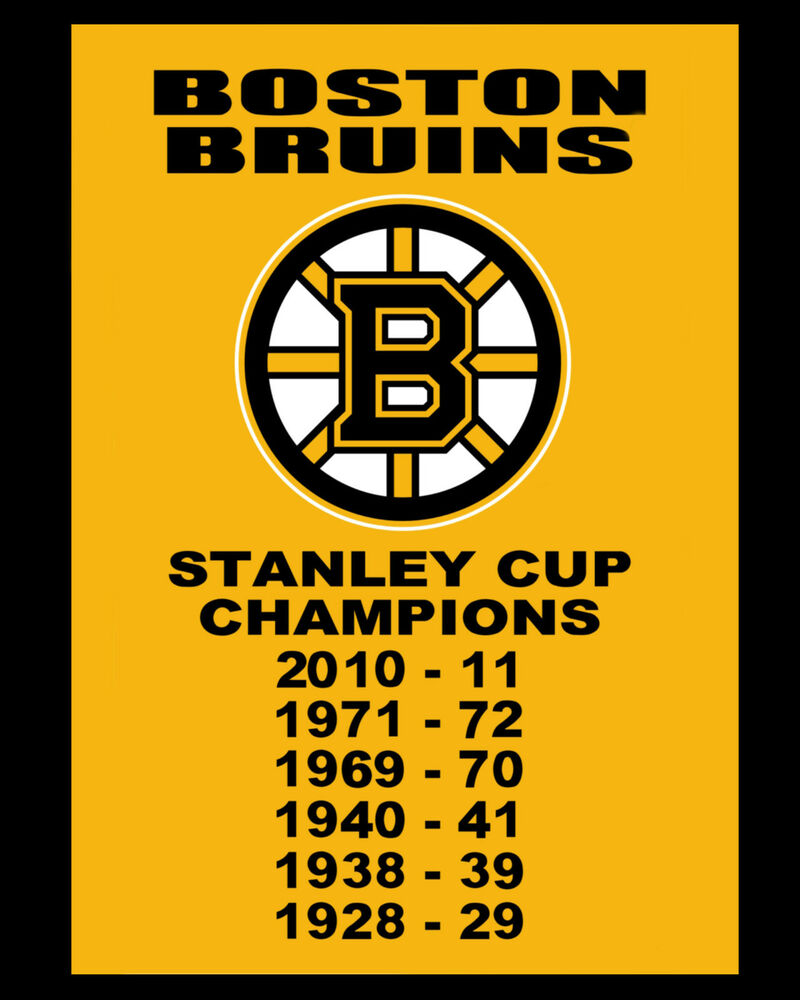 "Boston Bruins Championship Banner - 6""x10"" Photo"