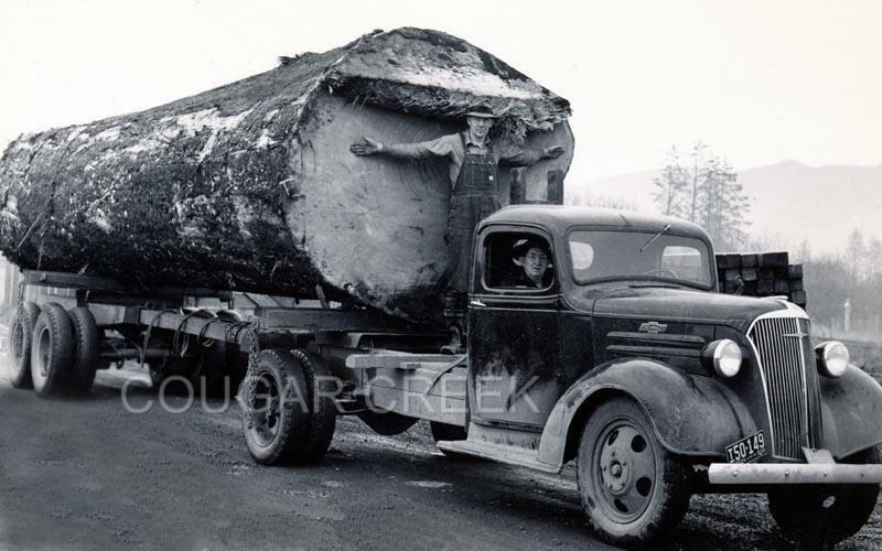 Nada Classic Cars >> 11x14 CHEVROLET LOGGING TRUCK HUGE 1 LOG LOAD 1939 PACIFIC NW PHOTO | eBay