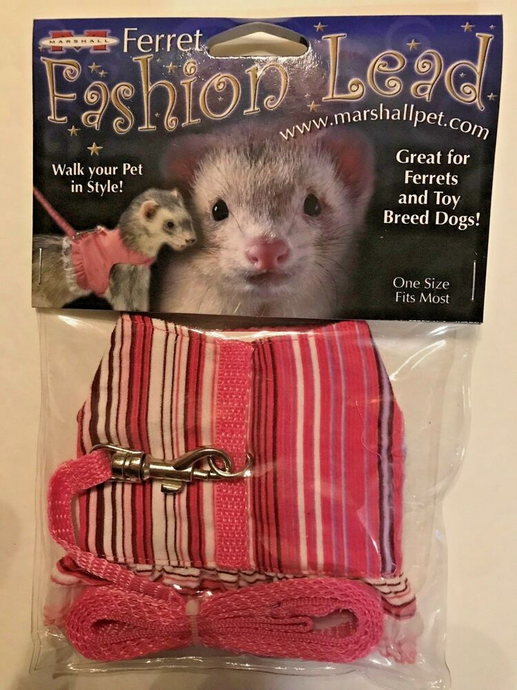 Ferret Toy Dog Fashion Harness Lead Pink Stripes With Lace