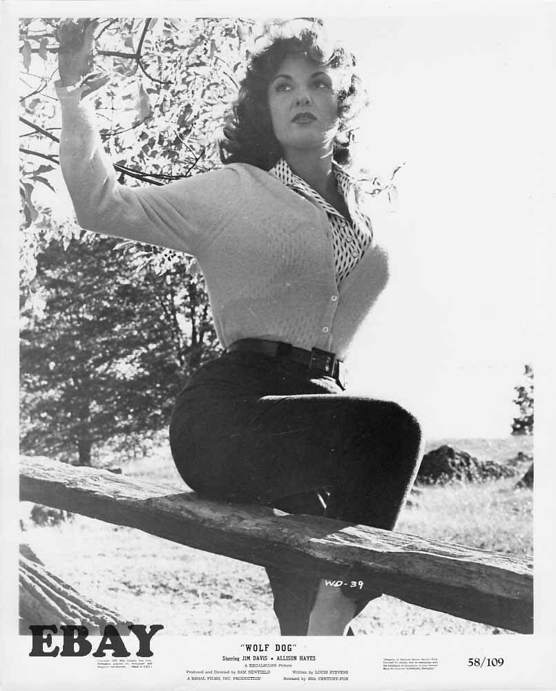 Allison Hayes busty tight sweater VINTAGE Photo Wolf Dog | eBay