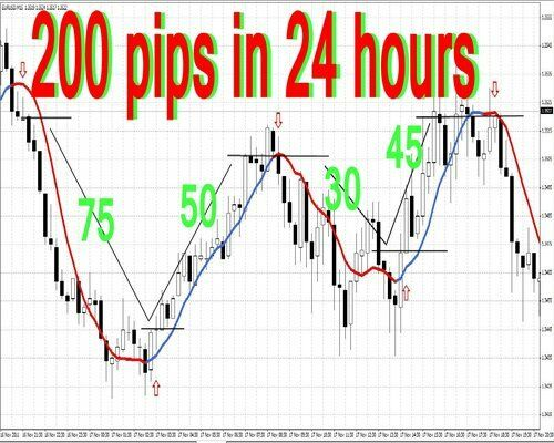 What is a pip in forex terms
