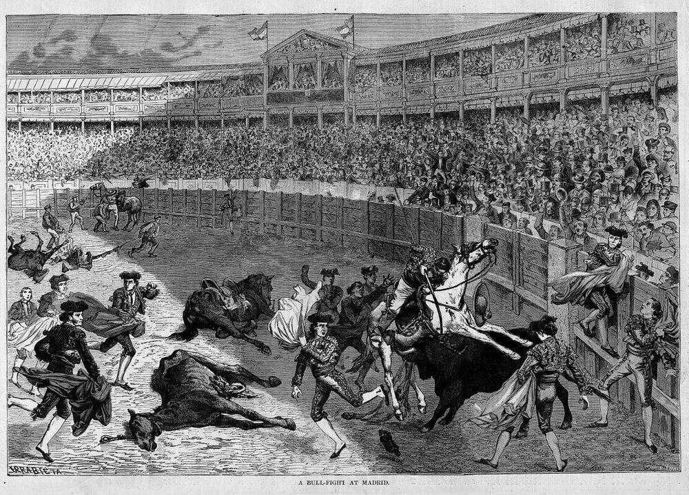 an overview of the history of bullfighting in spain Included are both all spanish and all english versions of cultural information about spain and about bullfighting, quizzes, comprehension questions, vocabulary, articles, journals, video activities, and class discussion topics.