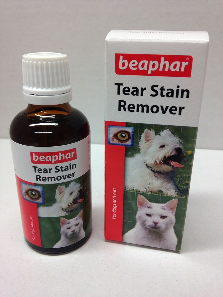 pet tear stain remover cat apply to cotton wool and