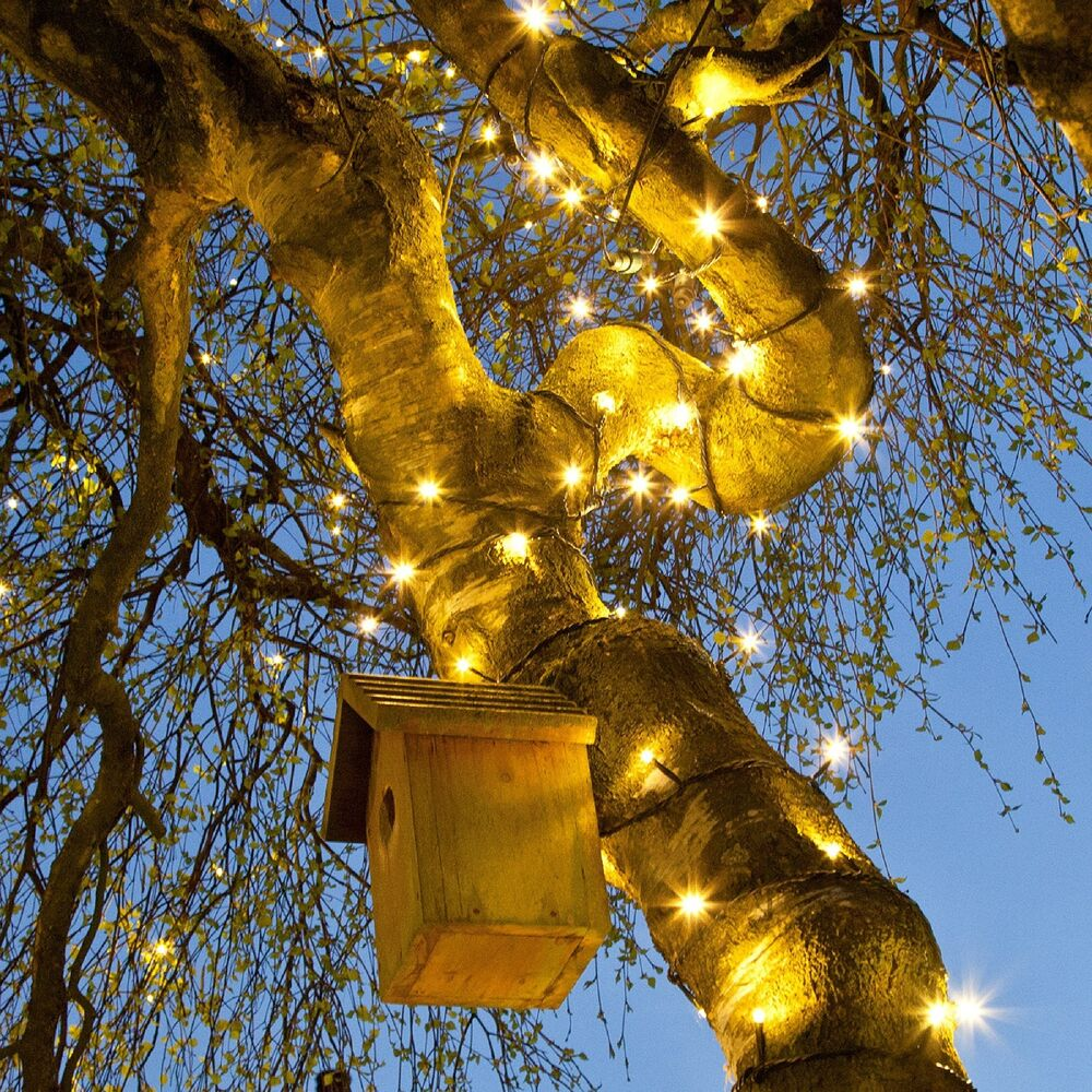 String Lights On Outdoor Tree : 1M-10M INDOOR OUTDOOR CHRISTMAS TREE GARDEN CONNECTABLE FAIRY STRING LED LIGHTS eBay