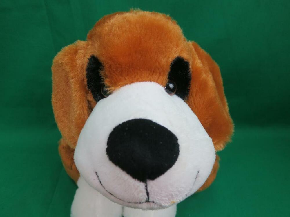 Puppy Toys For 10 And Up : Adorable black white brown beagle puppy dog kelly toy sit