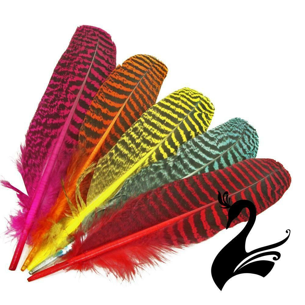 Feather peacock wing full quill craft millinery fly for Where to buy craft feathers