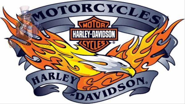 harley davidson flammen adler aufkleber 26x16cm xl eagle. Black Bedroom Furniture Sets. Home Design Ideas
