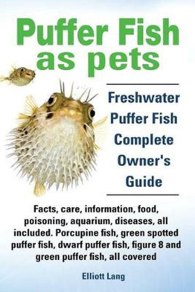 Puffer fish as pets freshwater puffer fish facts care for Freshwater fish facts