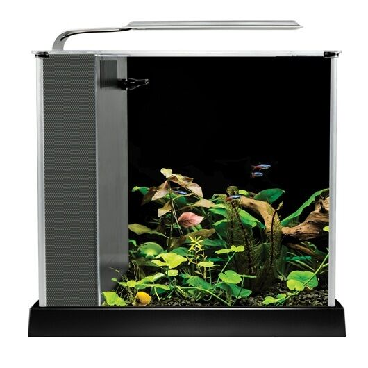 fluval spec iii aquarium 2 6 gallon black desktop glass aquarium ebay. Black Bedroom Furniture Sets. Home Design Ideas
