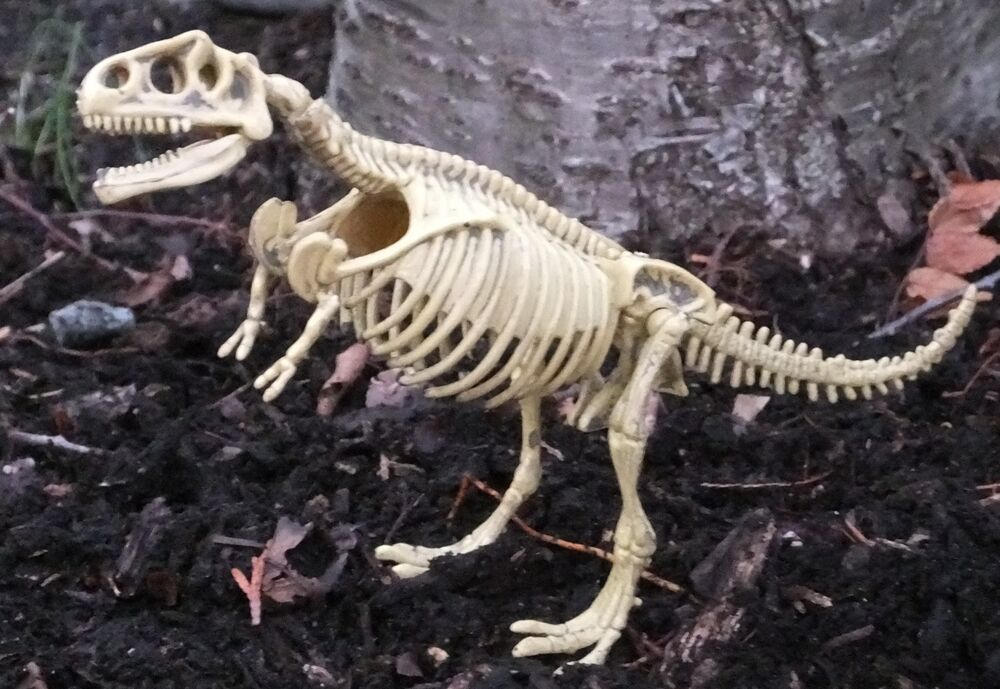 Cheap Price T Rex Skeleton Miniature Flat Car Load Fossil Diorama Accessory Item Awesome Toys & Hobbies