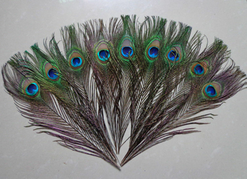 wholesale natural 100pcs peacock feathers eyes 10 12 wedding decoration ebay. Black Bedroom Furniture Sets. Home Design Ideas