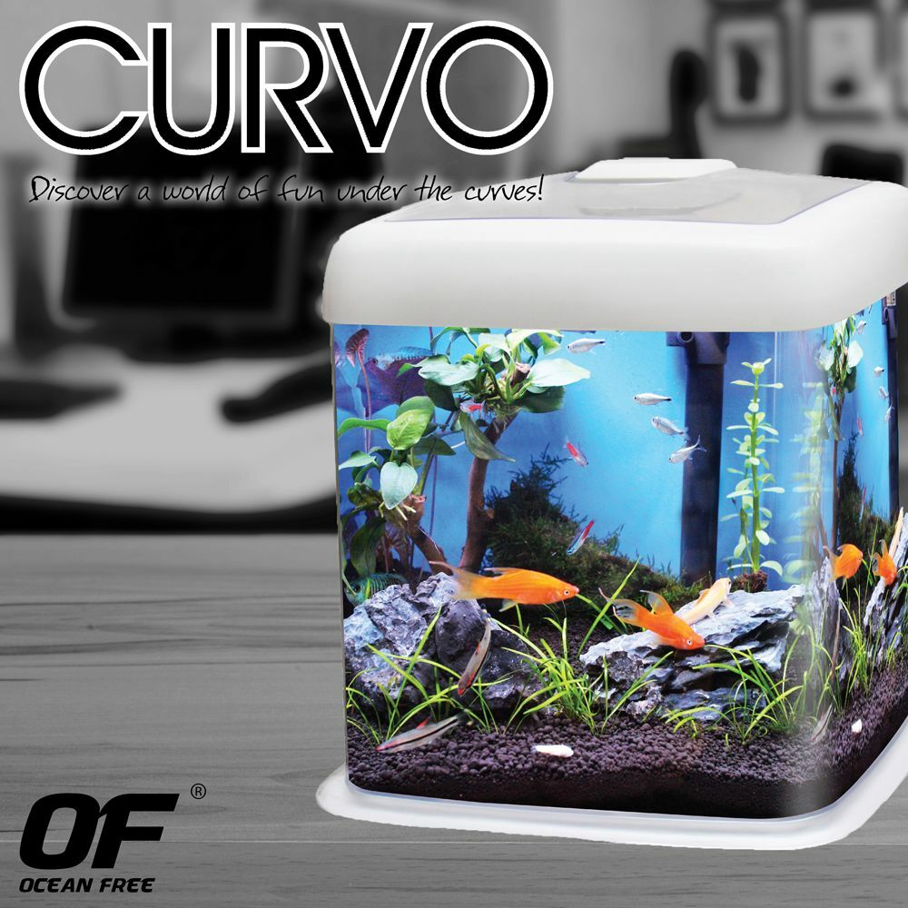 Curvo fish tank aquarium nano cube acrylic 12l led light for Aquarium nano cube