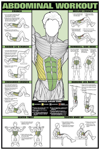 ABDOMINAL WORKOUT WALL CHART Professional Fitness Training ...