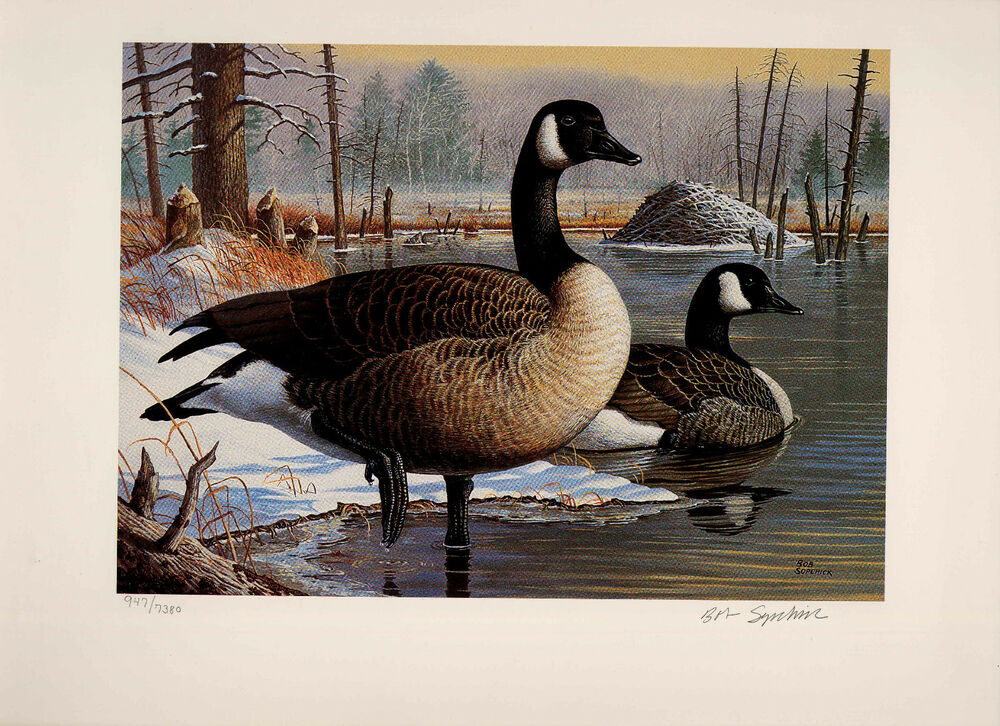 Pennsylvania 10 1992 State Duck Stamp Print Canada Geese By Bob Sopchick Ebay