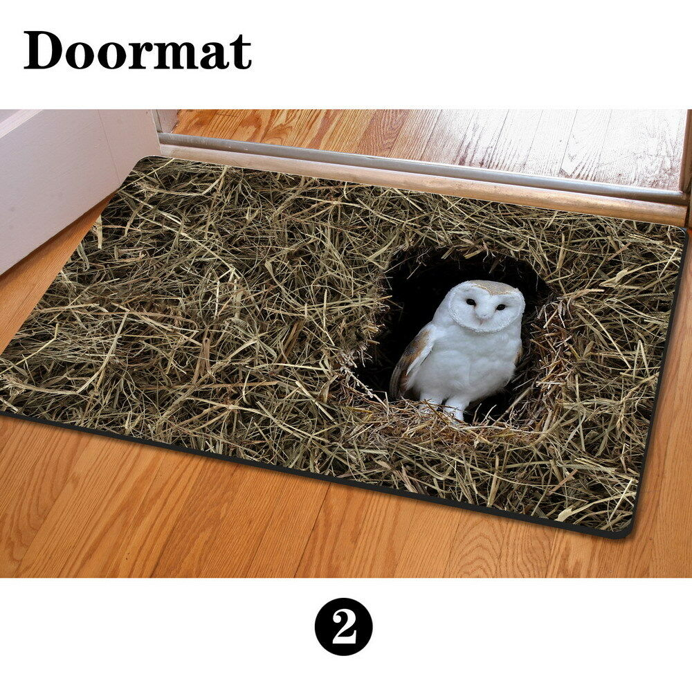 Novelty Owl Doormat Kitchen, Bathroom Non-slip Mats Funny