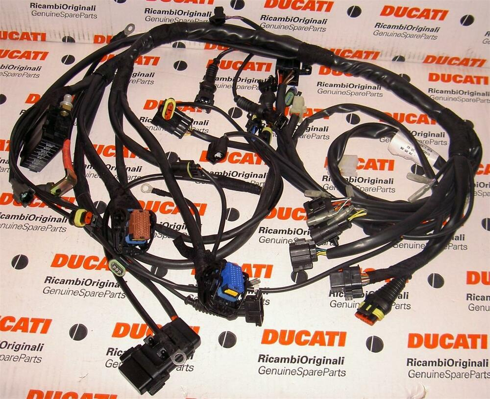 Ducati S4 Wiring Guide And Troubleshooting Of Diagram Smc Coil Sy5140 2006 Monster Ms2r Digitek 51014251a Main 1000 S2 St4s
