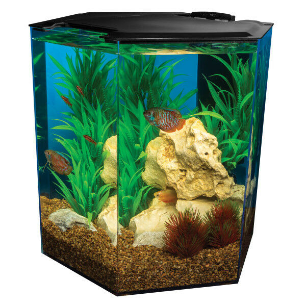 Marineland 5 Gallon Escape Hexagon Aquarium Kits eBay