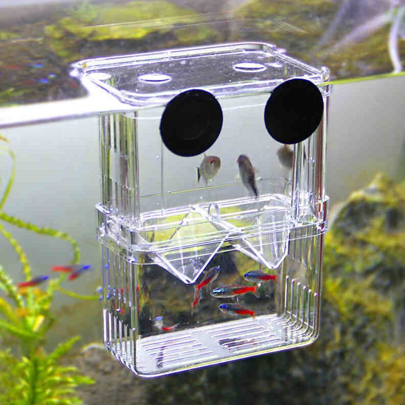 Hot sale clear self floating separating fish fry breeding for Fish tank dividers