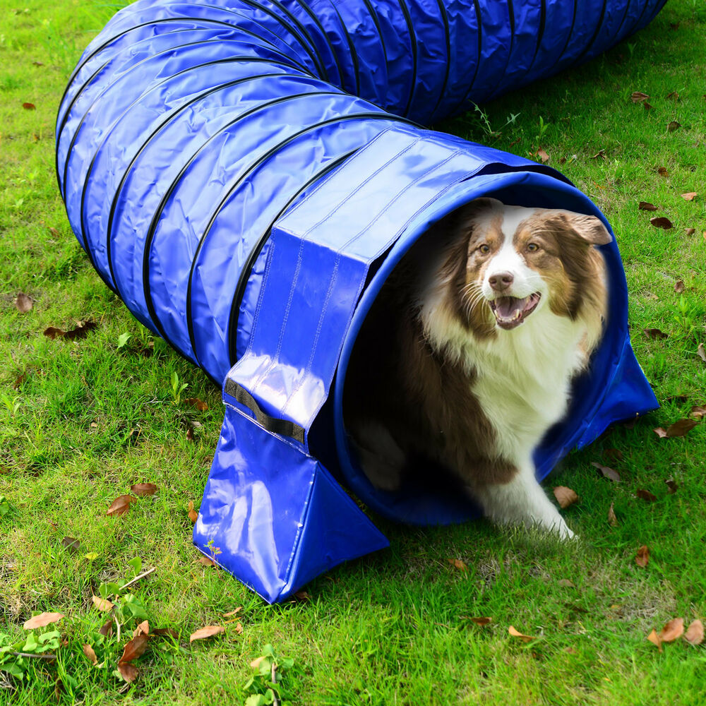 Dog agility exercise training tunnel sand bags holder for Kit fixation fenetre pvc