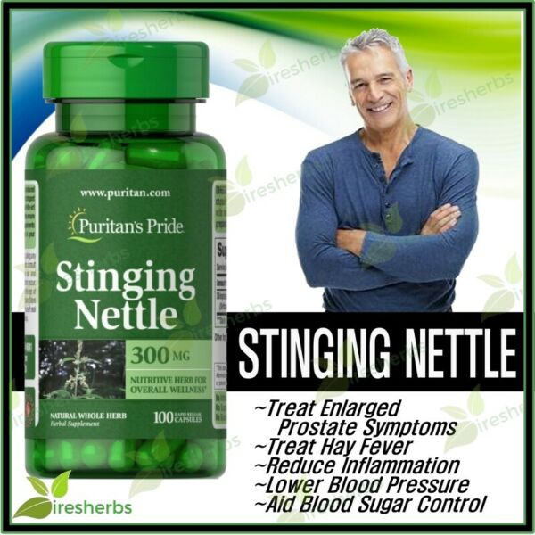 STINGING NETTLE 300mg LEAF ANEMIA DIURETIC HEALTH DIETARY SUPPLEMENT 100 CAPSULE
