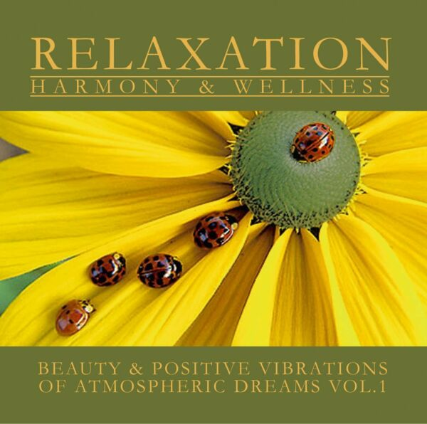 Wellness CD Atmospheric Dreams Volume 1 von Wellness Orchester