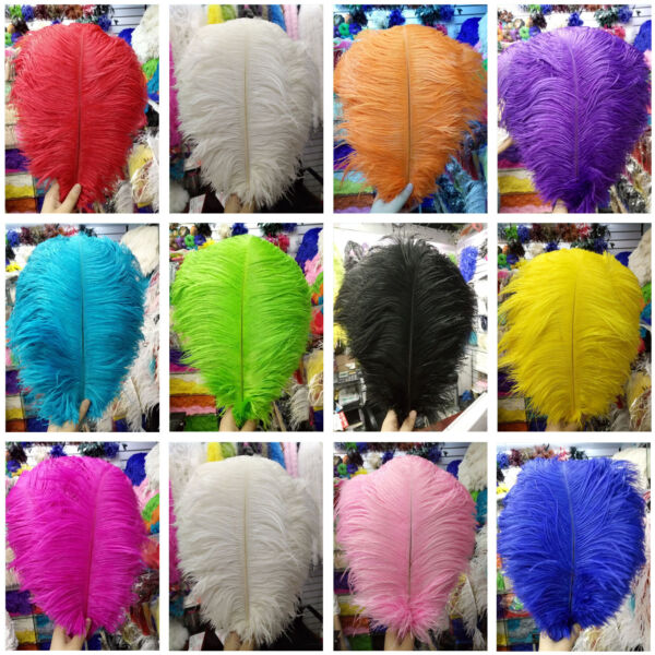 Wholesale 5-100 pcs Gorgeous Natural Ostrich Feathers 6-24 inches/15-60 cm Opt