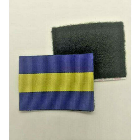 img-British Army Princess Of Wales Royal Regiment PWRR Combat Jacket/Shirt TRF Patch