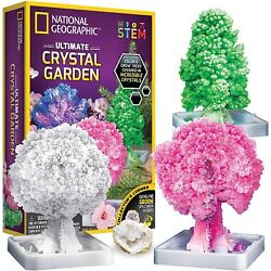 NATIONAL GEOGRAPHIC Crystal Garden   Grow 3 Trees in 6 Hours Learning Guide