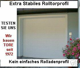rolltor garagentor ideal f r carport vom fachbetrieb ebay. Black Bedroom Furniture Sets. Home Design Ideas
