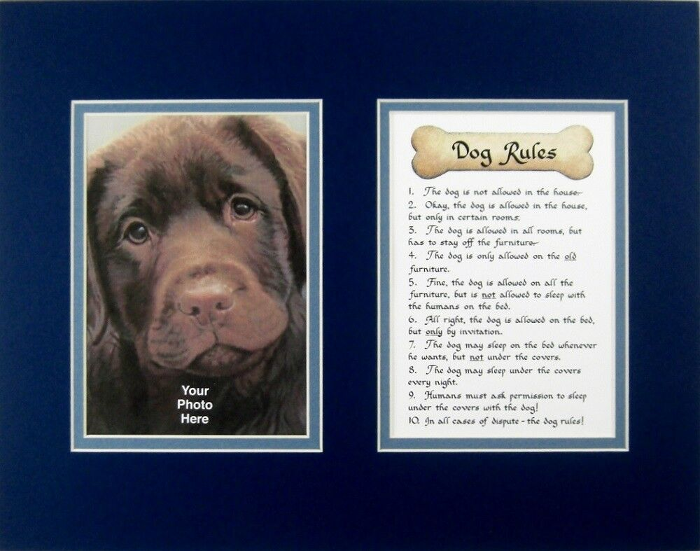 Dog Rules Calligraphy Humor Pet Saying Poem Photo Mat