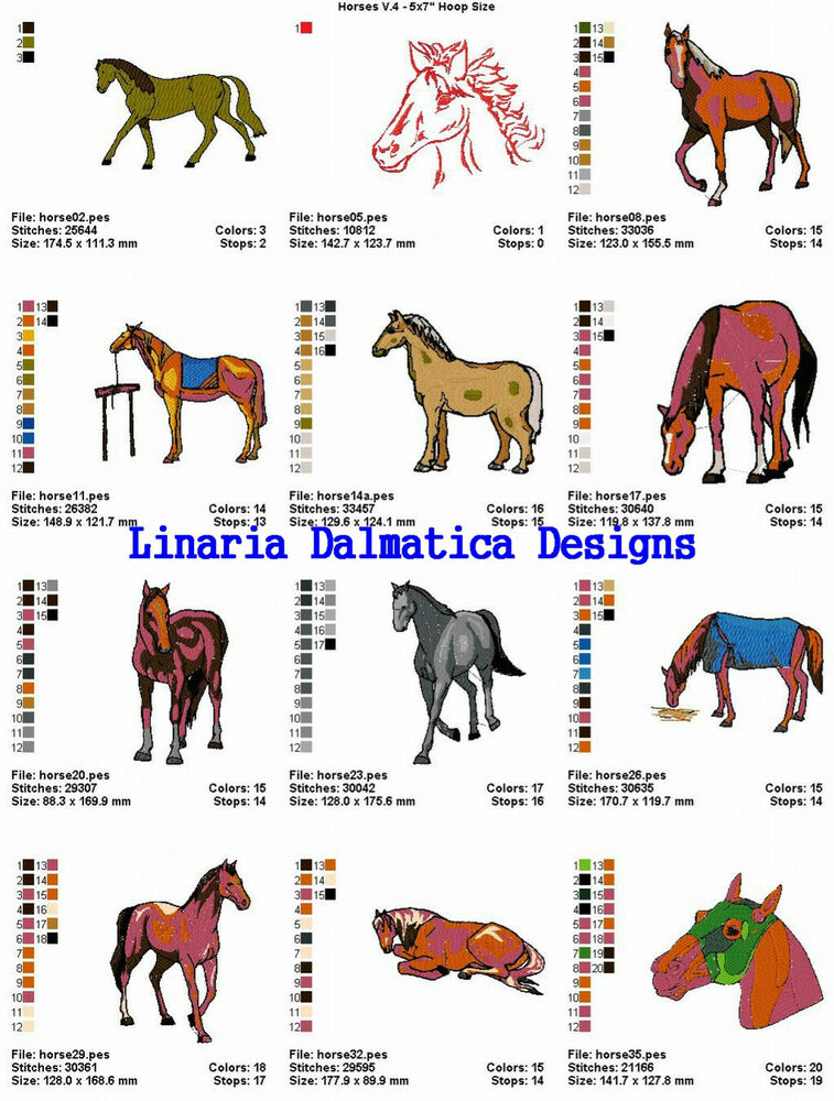 Horses vol 4 5x7 ld machine embroidery designs ebay for Embroidery office design version 7 5