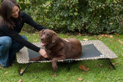 Raised Dog Bed Extra Large Elevated Cot Outdoor Pet Bed | eBay