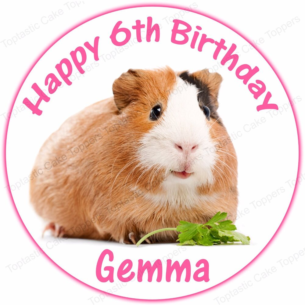 Personalised Guinea Pig Round Edible Icing Cake Topper | eBay